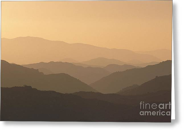 Sweetwater Greeting Cards - Cleveland National Forest Greeting Card by Greg Vaughn - Printscapes