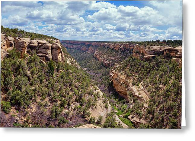 Cliff Palace Mesa Verde Greeting Card by Joan Carroll