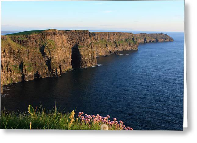 Cliffs Of Moher In Evening Light Greeting Card by Aidan Moran