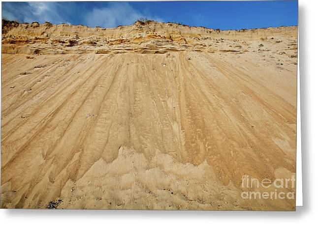 Marconi Beach Greeting Cards - Cliffward Greeting Card by Susan Cole Kelly