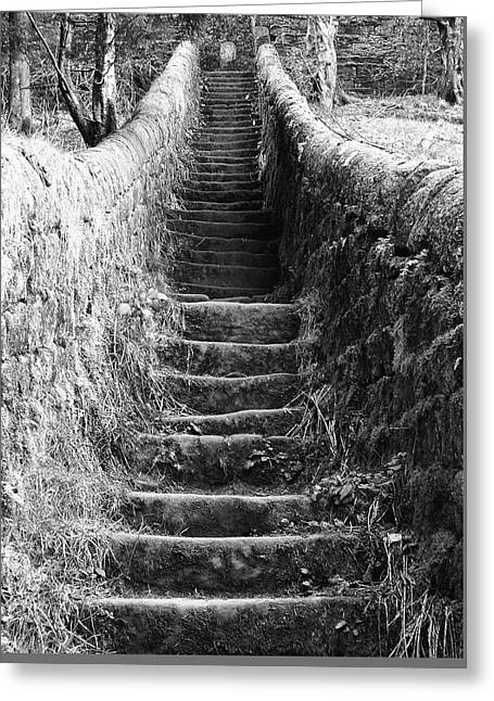 Climbing Up Greeting Card by Philip Openshaw