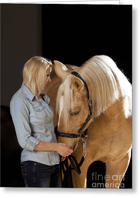 Horse Owner Greeting Cards - Close relationship between humans and animals Greeting Card by Wolfgang Steiner