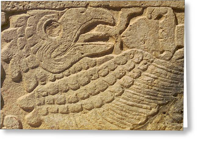 Stone Carving Greeting Cards - Close-up of a Mayan Greeting Card by Raul Touzon