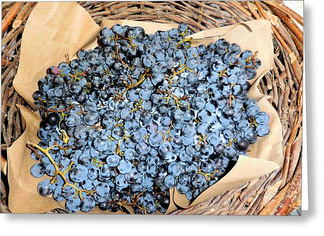 Blue Grapes Greeting Cards - Close up of black grapes in a basket Greeting Card by Lanjee Chee
