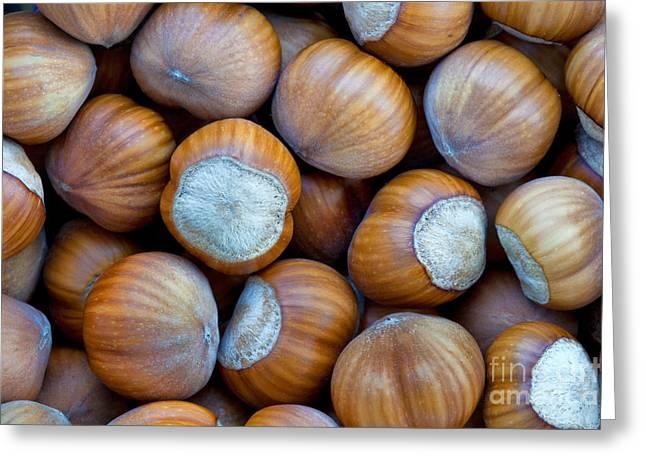 Hazelnut Greeting Cards - Close-up Of Harvested Hazelnuts Greeting Card by Inga Spence