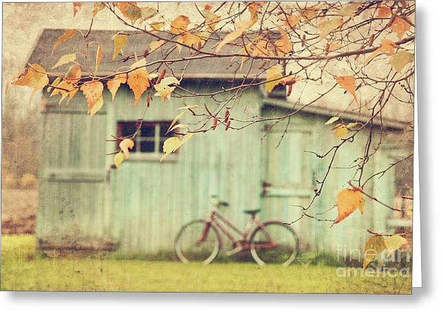 Closeup of leaves with old barn in background Greeting Card by Sandra Cunningham