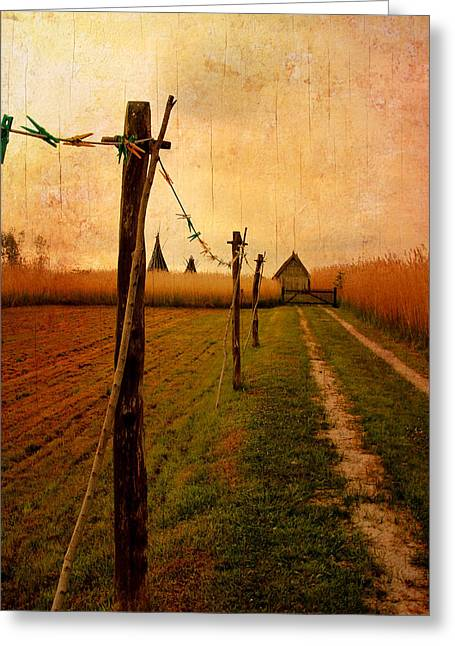 Summer Storm Greeting Cards - Clothesline Greeting Card by Heike Hultsch