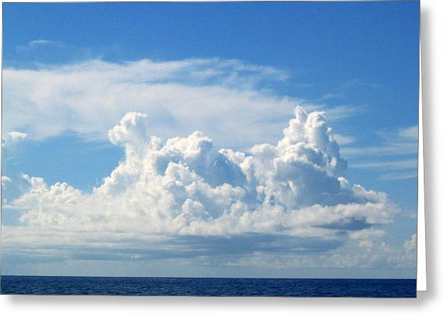 Cloud Greeting Card by Barbara Marcus