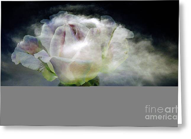 Composite Art Greeting Cards - Cloud Rose Greeting Card by Clayton Bruster