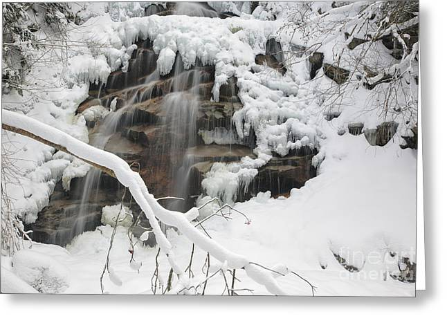Snowy Brook Greeting Cards - Cloudland Falls - White Mountains New Hampshire Greeting Card by Erin Paul Donovan