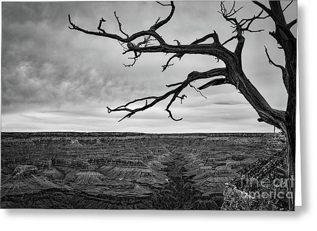 Clouds And The Canyon Greeting Card by Ana V Ramirez