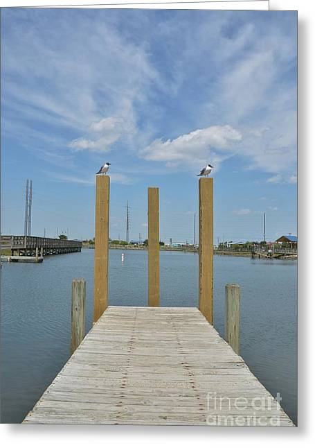 Docked Sailboats Greeting Cards - Clouds Over Surf City NC -1  Greeting Card by Bob Sample