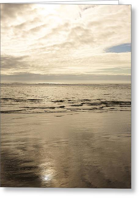 Beach Landscape Greeting Cards - Cloudy Day Overlooking The Ocean Greeting Card by Gillham Studios