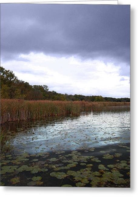 Marshes Digital Greeting Cards - Cloudy Marsh Greeting Card by Abbey Staum