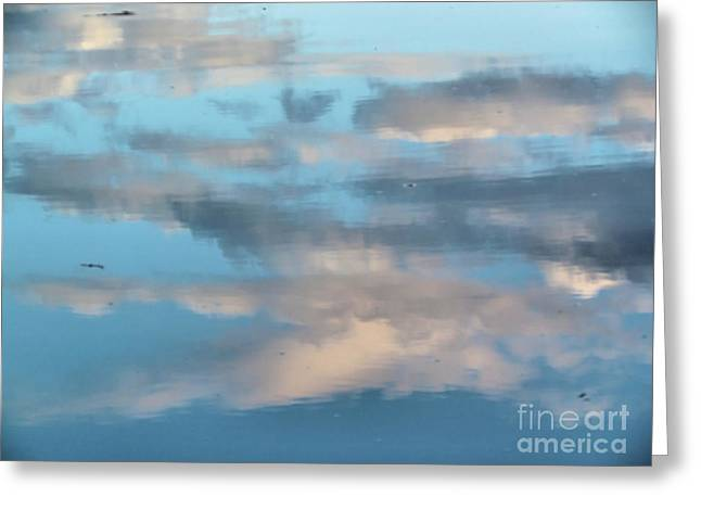 Somes Sound Greeting Cards - Cloudy Reflections Greeting Card by Elizabeth Dow