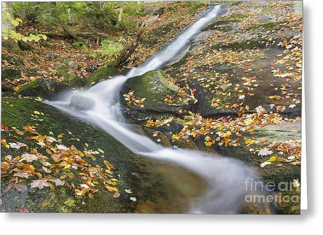 White River Scene Greeting Cards - Clough Mine Brook - Kinsman Notch New Hampshire Greeting Card by Erin Paul Donovan