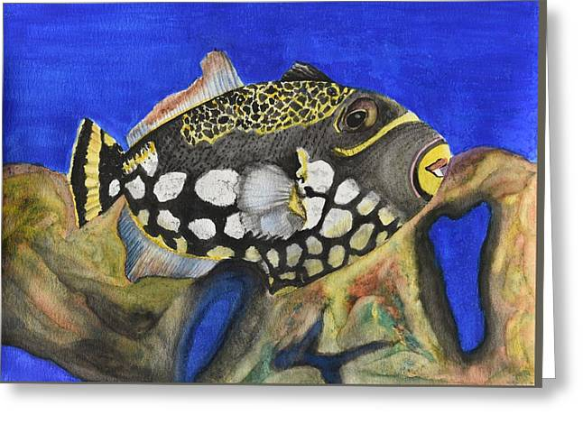 Triggerfish Paintings Greeting Cards - Clown Triggerfish Greeting Card by Linda Brody