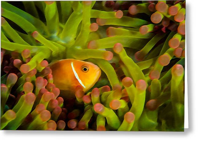 White Paintings Greeting Cards - Clownfish and anemones 2 Greeting Card by Lanjee Chee