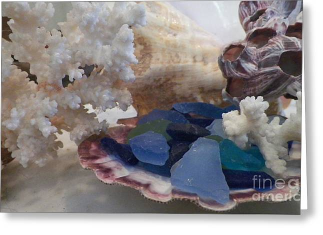 Shell Texture Greeting Cards - Cluster Of Ocean Finds Greeting Card by Gina Sullivan
