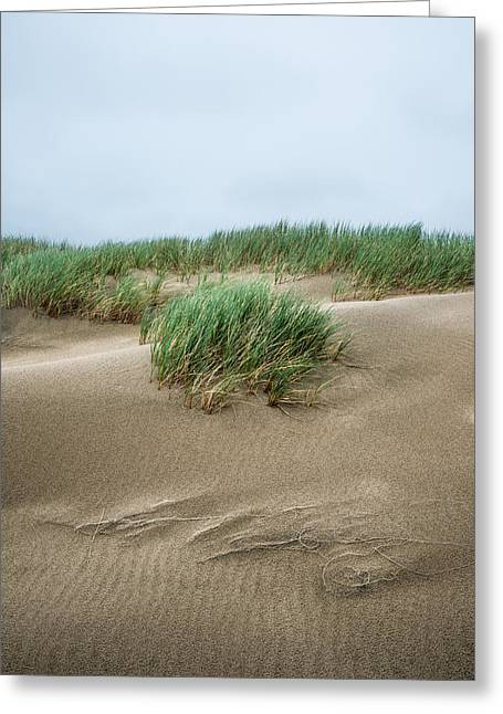 Sand Pattern Greeting Cards - Coastal Dunes Greeting Card by Alexander Kunz