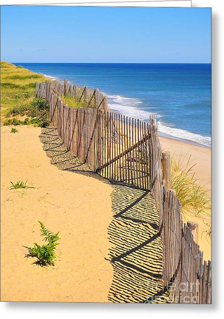 Cape Cod Mass Greeting Cards - Coastal Erosion Greeting Card by Catherine Reusch  Daley
