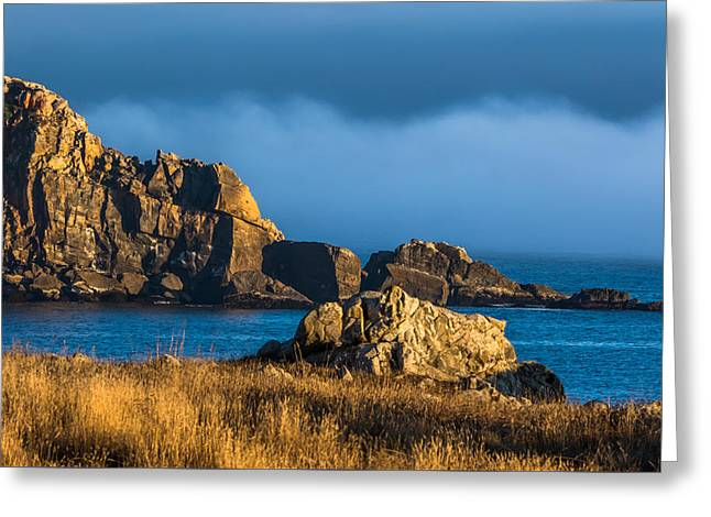 California Beaches Greeting Cards - Coastal Fog and Rocks Greeting Card by Marc Crumpler