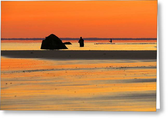 Coastal Glow Greeting Card by Dianne Cowen