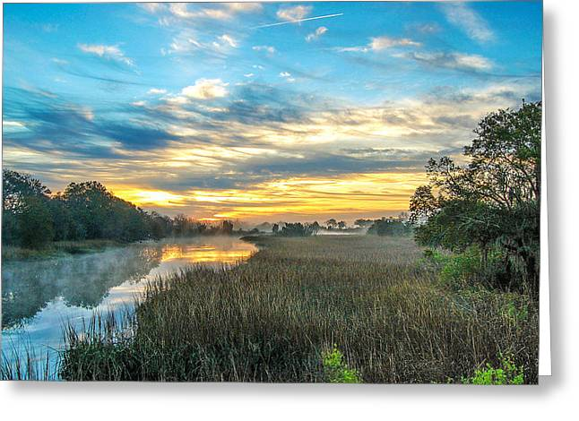 Donnie Smith Greeting Cards - Coastal Grace Greeting Card by Donnie Smith