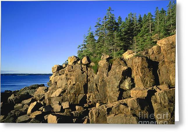 Maine Shore Greeting Cards - Coastal Maine Greeting Card by John Greim