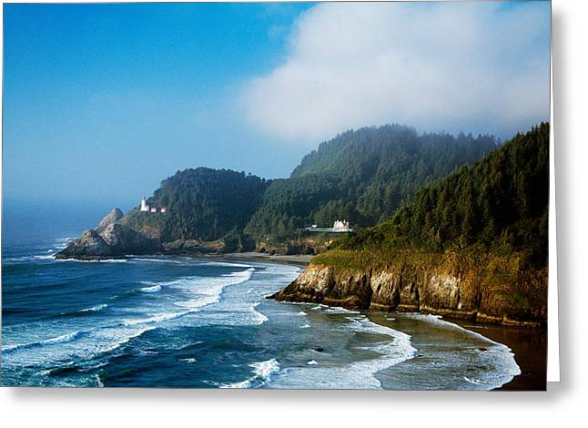 Oregon Lighthouse Image Greeting Cards - Coastal Scene In Mist With Heceta Head Greeting Card by Panoramic Images