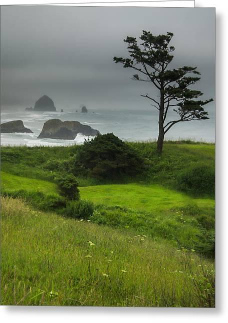 Foggy Beach Greeting Cards - Coastal Solitude Greeting Card by Don Schwartz