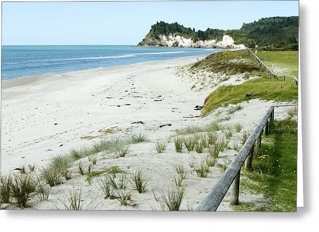 Coastline Nz Greeting Card by Les Cunliffe
