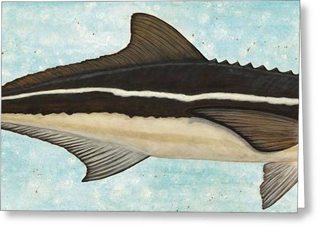Sea Animals Greeting Cards - Cobia Greeting Card by JoAnn Wheeler