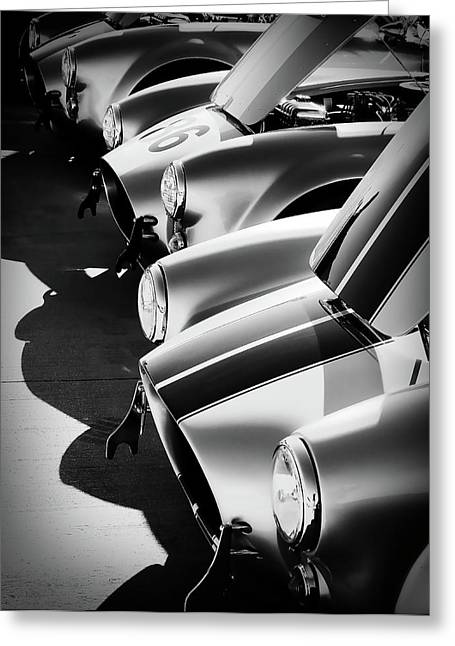 Shelby Greeting Cards - Cobra Pit Greeting Card by Douglas Pittman