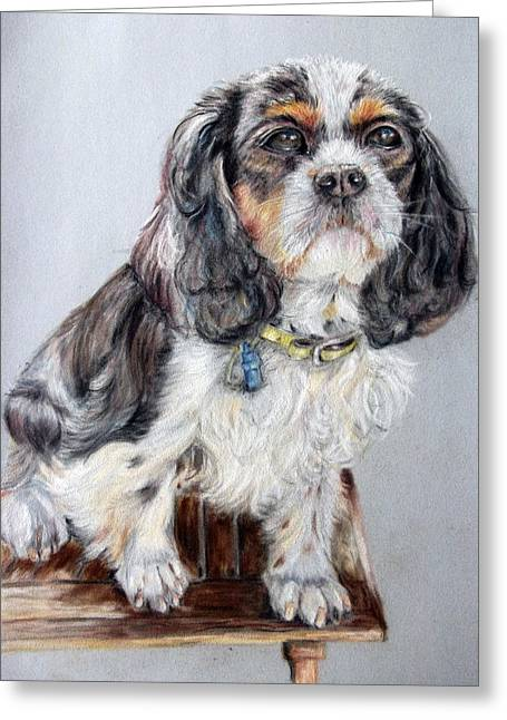 Spaniel Pastels Greeting Cards - Cocoa Greeting Card by Tanya Patey