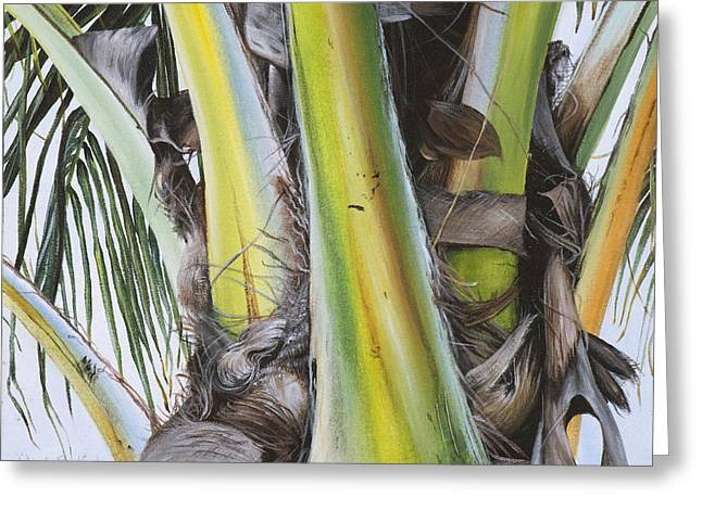 Tropical Beach Greeting Cards - Coconut branches Greeting Card by Wendy Ballentyne