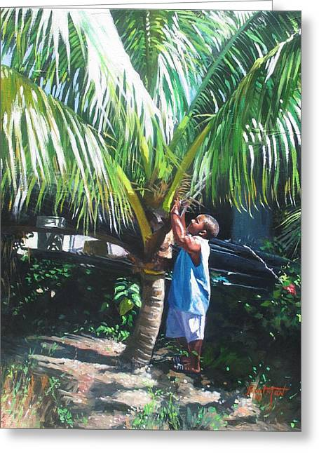 Small Trees Greeting Cards - Coconut Shade Greeting Card by Colin Bootman