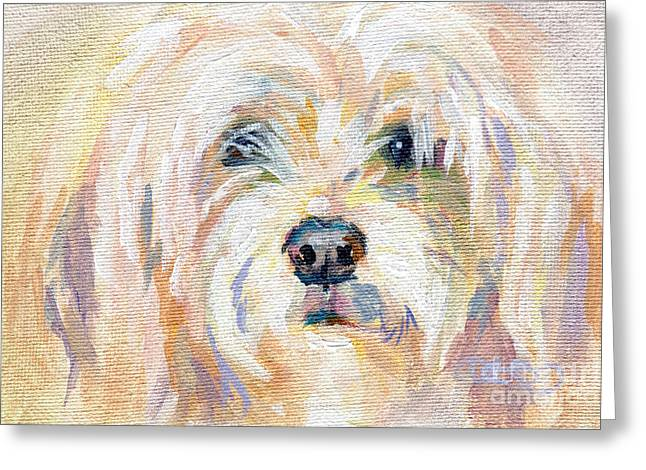 Lavendar Greeting Cards - Cody Dog Greeting Card by Kimberly Santini