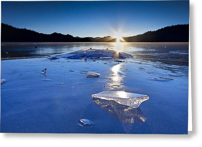 Cold As Ice Greeting Card by Evan Spellman