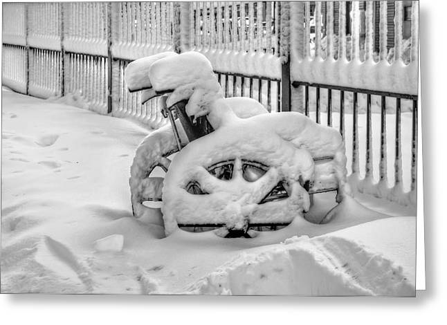 Wheelchair Greeting Cards - Cold Disposition Greeting Card by Evelina Kremsdorf