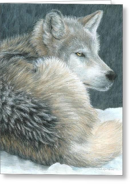 Cold Evening Greeting Card by Carla Kurt