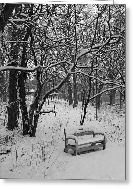 Park Benches Greeting Cards - Cold Seat Greeting Card by Lauri Novak