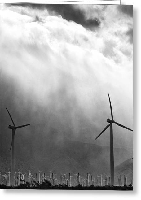 Storm Prints Photographs Greeting Cards - COLD WIND Palm Springs Greeting Card by William Dey