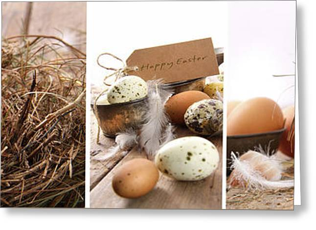 Background Greeting Cards - Collage of assorted egg images  Greeting Card by Sandra Cunningham