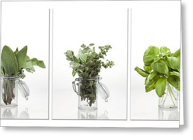 Flavorings Greeting Cards - Collage of herbs in a glass jar Greeting Card by Wolfgang Steiner