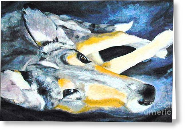 Smooth Drawings Greeting Cards - Collie Merle Smooth Greeting Card by Susan A Becker