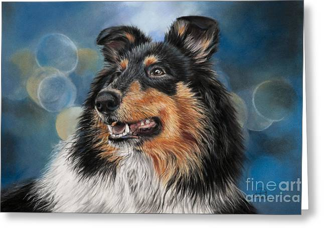 Collie Pastels Greeting Cards - Collie Greeting Card by Sabrina  Pedron