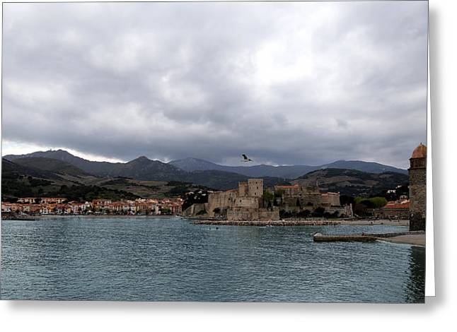 South Of France Greeting Cards - Collioure 2 Greeting Card by Andrew Fare