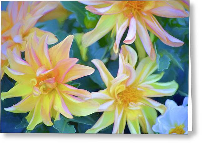 Color 154 Greeting Card by Pamela Cooper