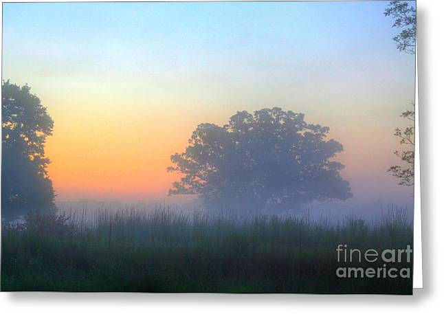 Reflection In Water Mixed Media Greeting Cards - Color and Fog Greeting Card by Robert Pearson